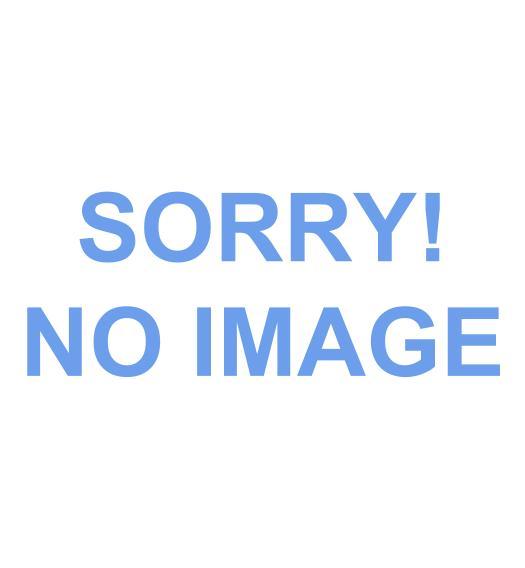 蓝盾国际娱乐城返水iPhone11发布:起售价降了1000元,新增紫、绿色